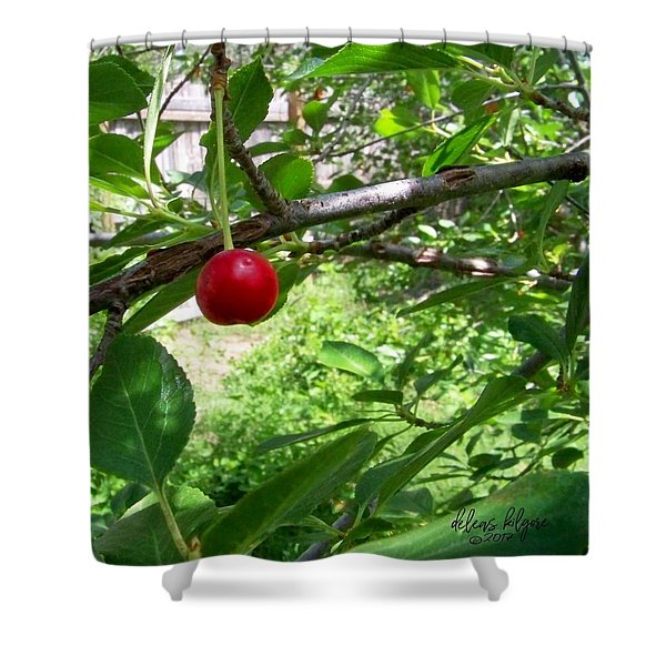 First Of The Season Shower Curtain