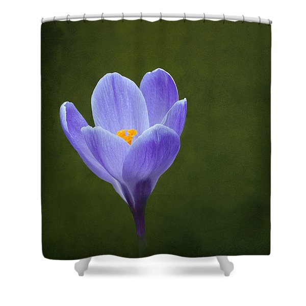 First Sign Of Spring Shower Curtain