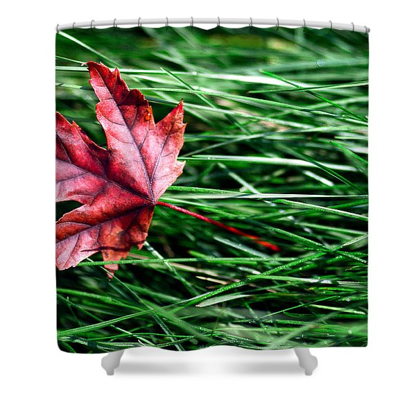 First Signs Of Autumn Shower Curtain