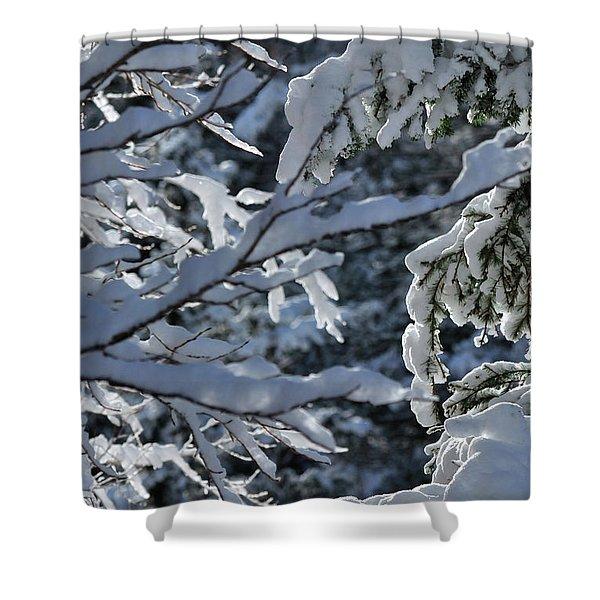 First Snow II Shower Curtain