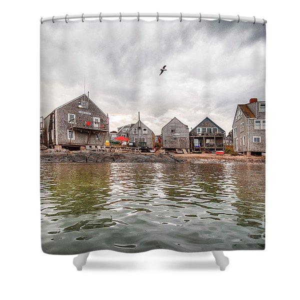 Fish Beach Shower Curtain