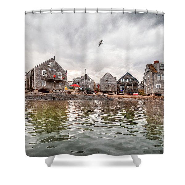 Fish Beach Shower Curtain