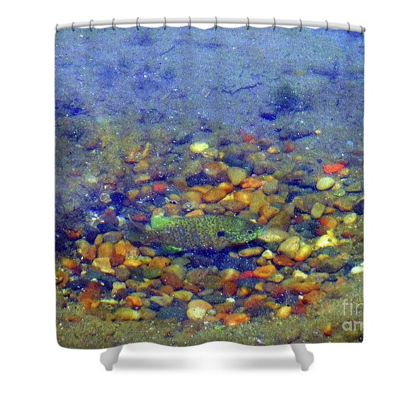 Fish Spawning Shower Curtain