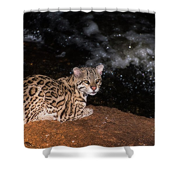 Fishing In The Stream Shower Curtain