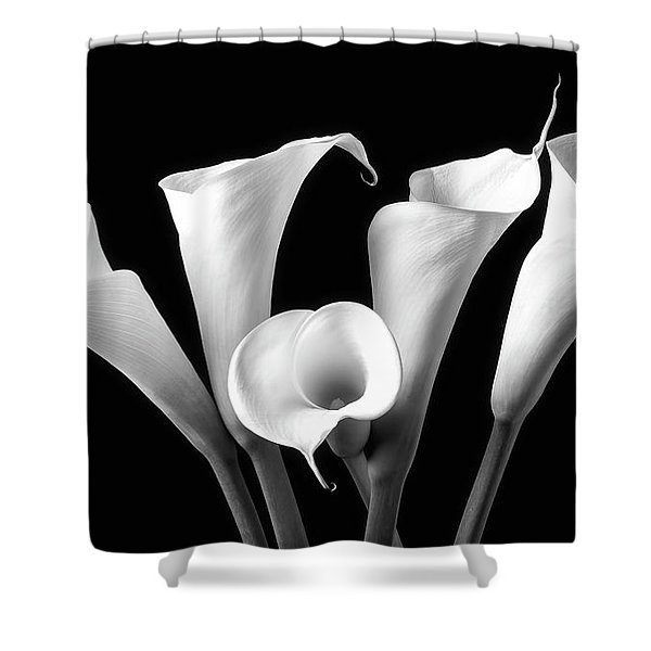 Five Black And White Calla Lilies Shower Curtain