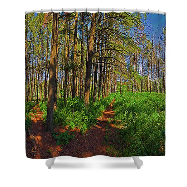 Paths, Pines 360 Shower Curtain
