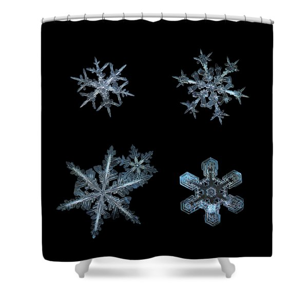 Five Snowflakes On Black 3 Shower Curtain