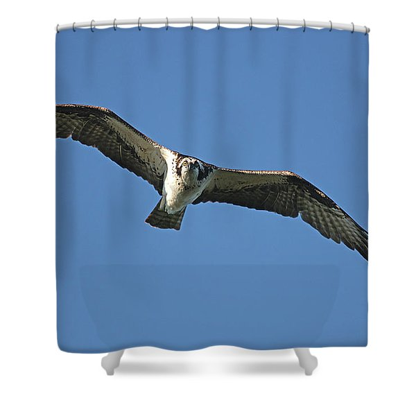 Fixation Shower Curtain
