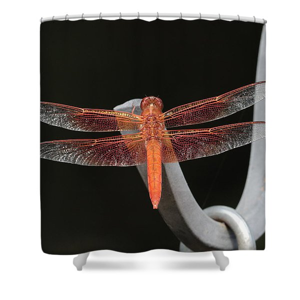 Flame Skimmer Shower Curtain