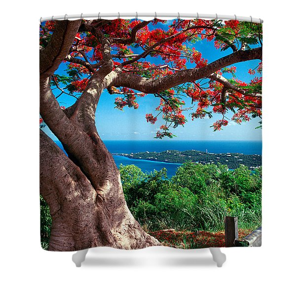 Flame Tree St Thomas Shower Curtain