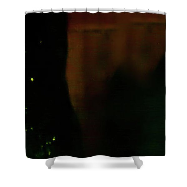 Shower Curtain featuring the photograph Flamenco 37 by Catherine Sobredo
