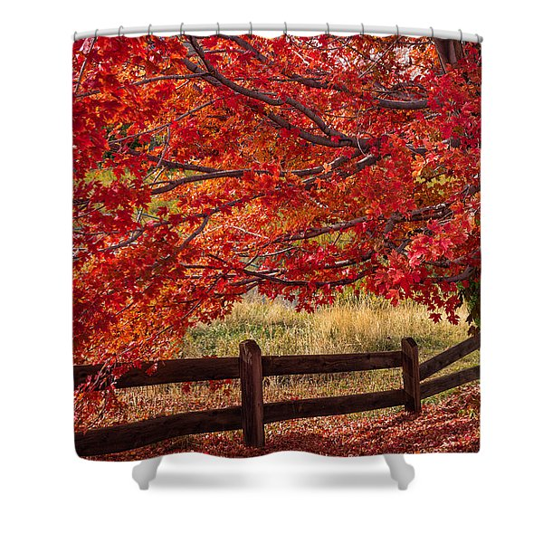 Flames On The Fence Shower Curtain
