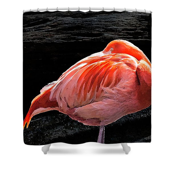 Flamingo - 8331 Shower Curtain