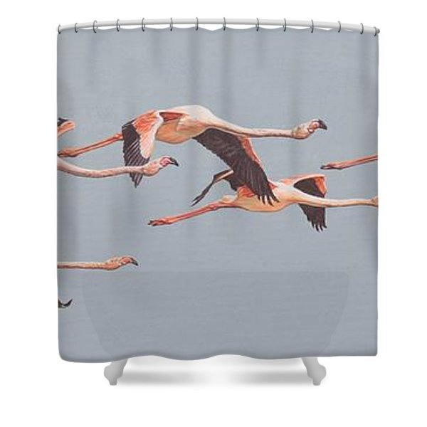 Shower Curtain featuring the painting Flamingos In Flight by Alan M Hunt