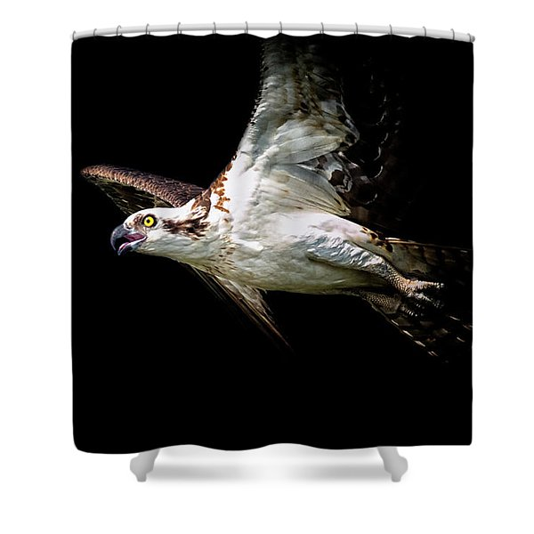 Flaps Up Shower Curtain
