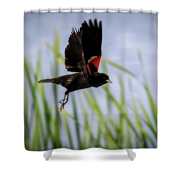 Flash Of Red Shower Curtain