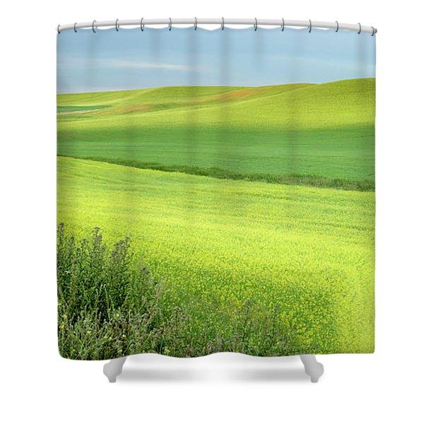 Flat Earth Shower Curtain
