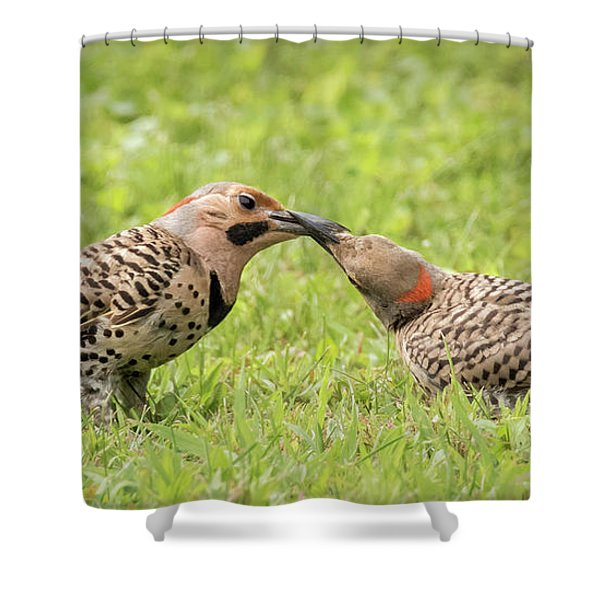 Flicker Feeding Shower Curtain