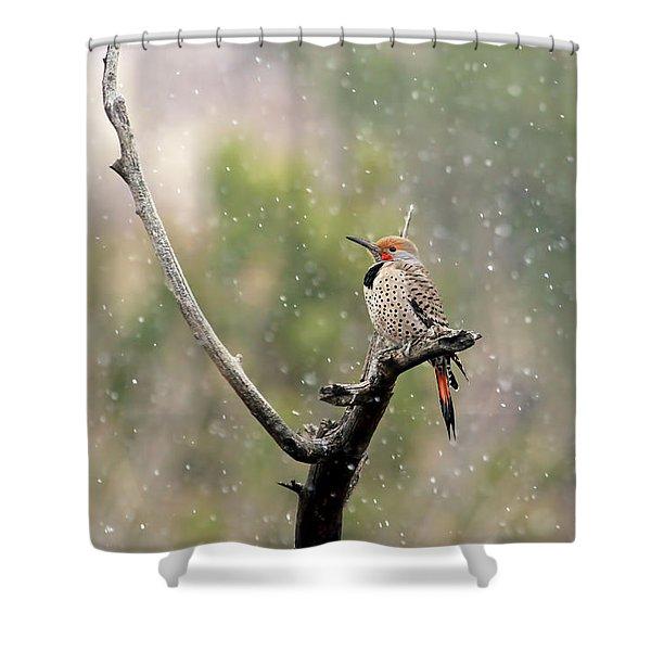 Flicker In The Rain Shower Curtain