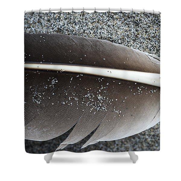 Flight Feather Shower Curtain