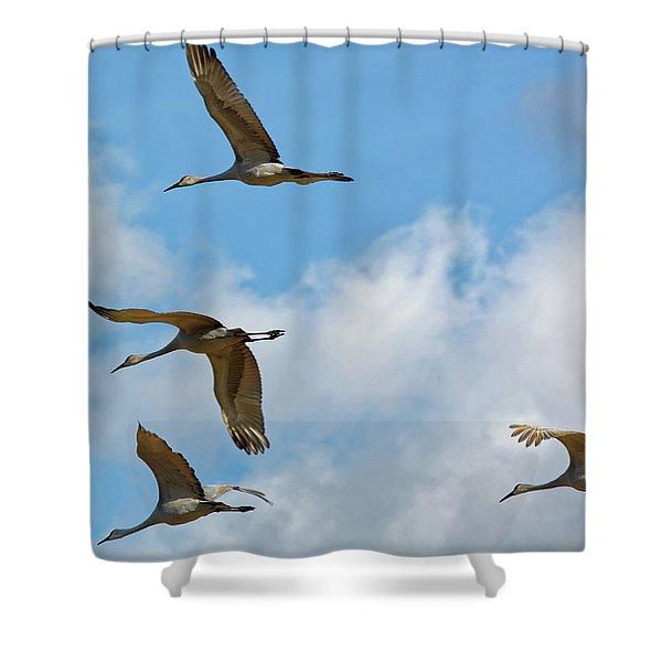 Flight Of The Cranes Shower Curtain
