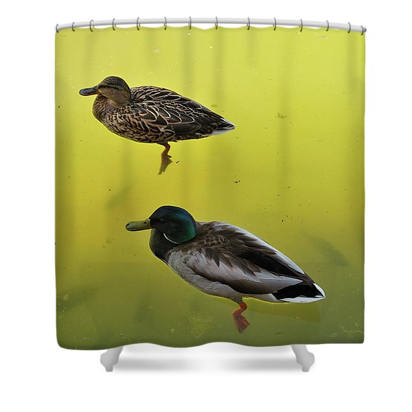 Floating Around Shower Curtain