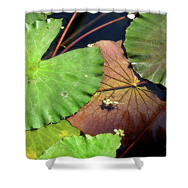 Floating Lily Pads Shower Curtain