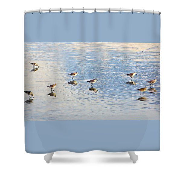 Flock Of Sanderlings Shower Curtain
