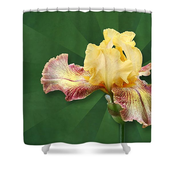 Floral Radiance Shower Curtain