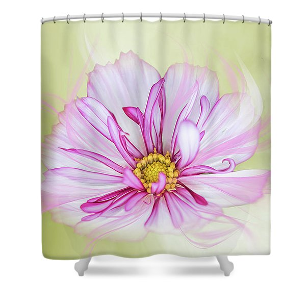 Floral Wonder Shower Curtain