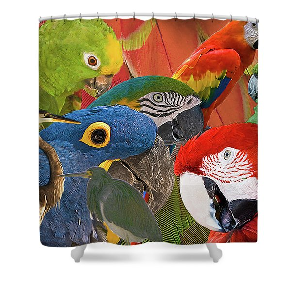 Florida Birds Shower Curtain