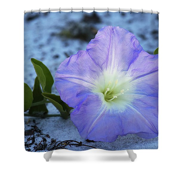 Florida Bonamia Shower Curtain