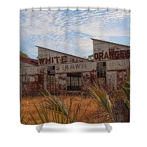 Florida Oranges Shower Curtain