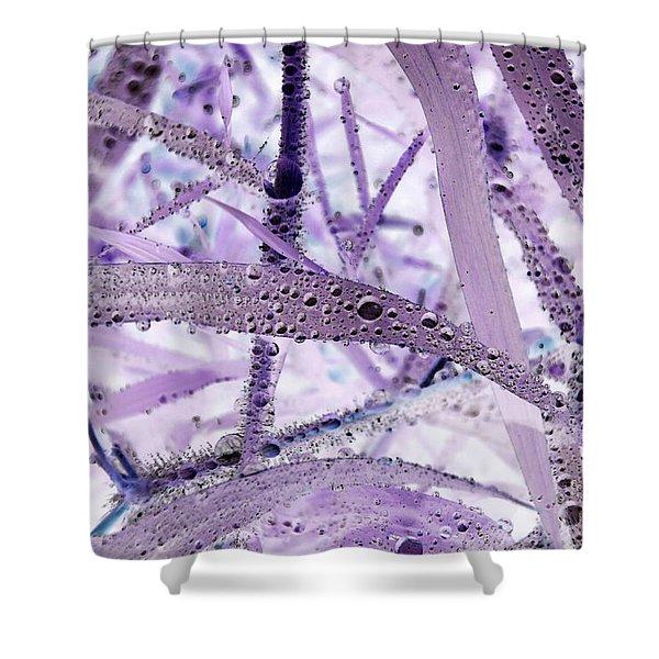 Flounder Shower Curtain