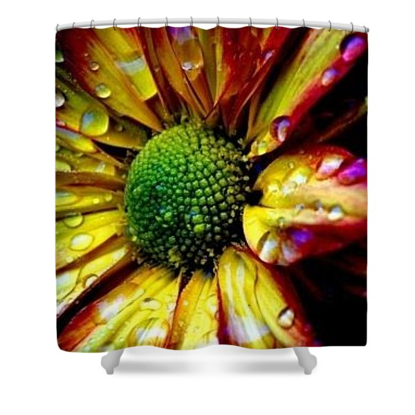 Flower Colorful Drops Petals Shadow Background 17802 300x360 Shower Curtain