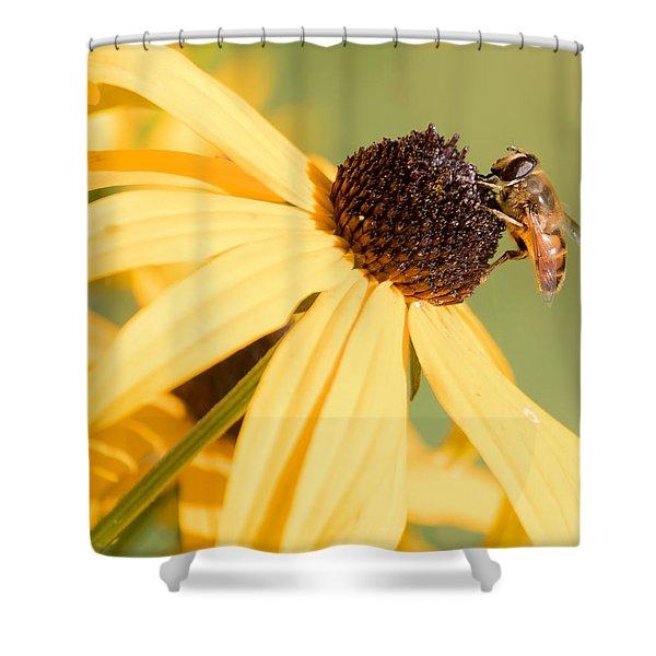 Flower Fly Shower Curtain
