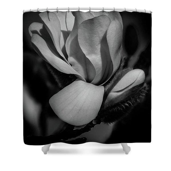 Flower Noir Shower Curtain