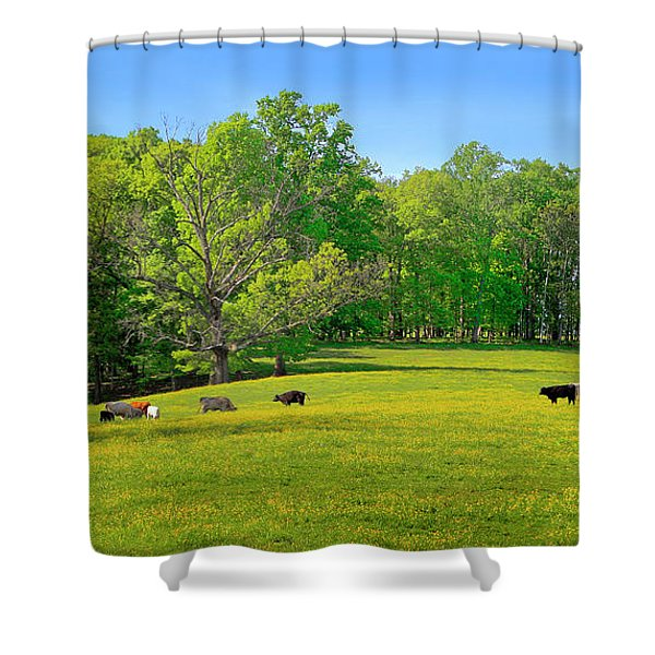 Flowering Cow Pasture Shower Curtain
