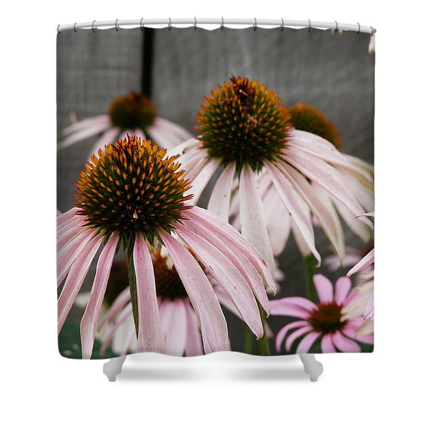 Flowers Along The Fence Shower Curtain
