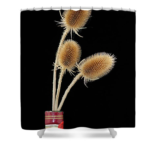 Flowers In A Bottle Shower Curtain