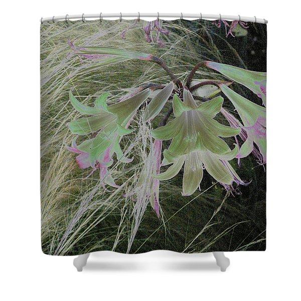 Flowers In Berkeley Shower Curtain