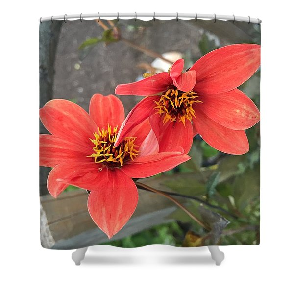 Flowers In Love Shower Curtain