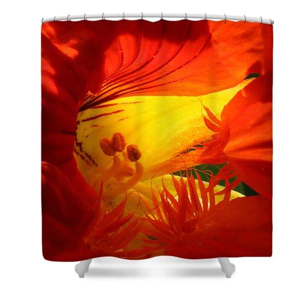 Flowerscape Nasturtium Two Shower Curtain