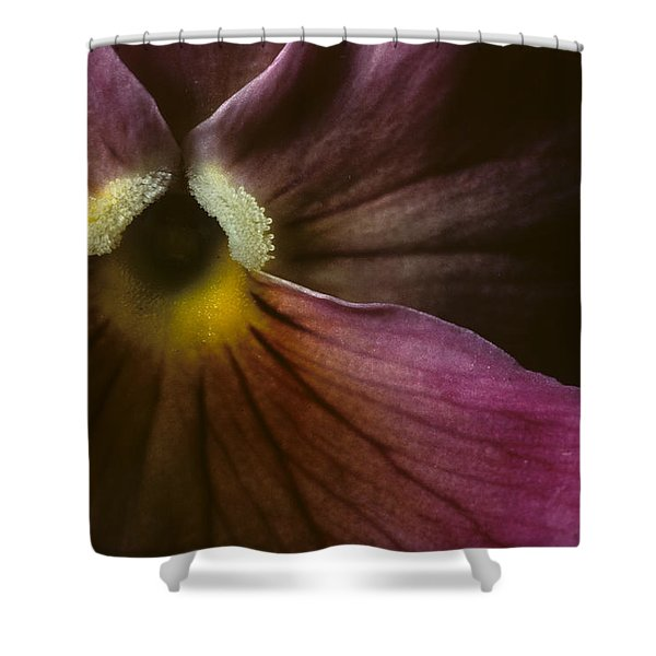 Flowerscape Pansy One Shower Curtain