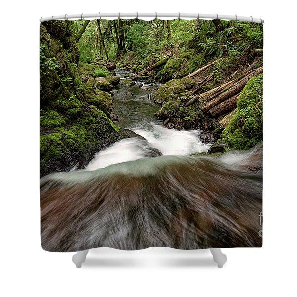 Flowing Downstream Waterfall Art By Kaylyn Franks Shower Curtain