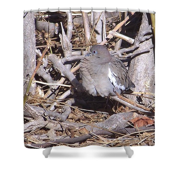 Shower Curtain featuring the digital art Fluffy Dove by Deleas Kilgore