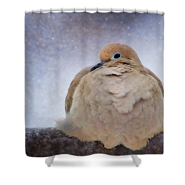 Fluffy Mourning Dove Shower Curtain