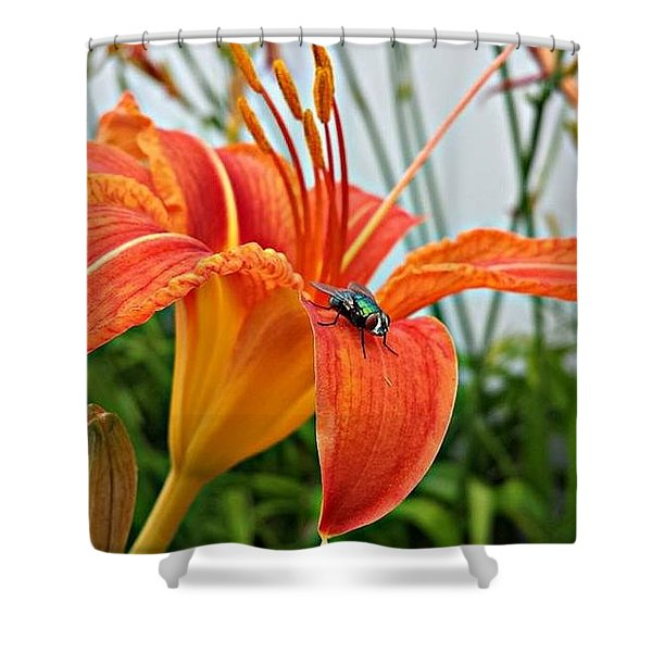 Fly Lilly Shower Curtain