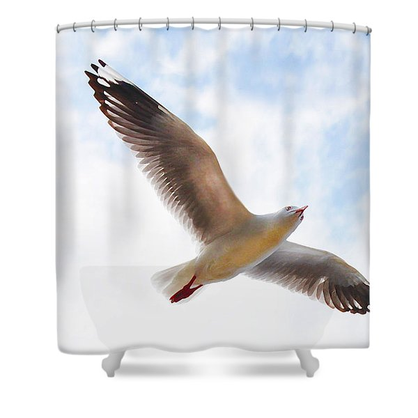 Flying Away From The Madness Shower Curtain