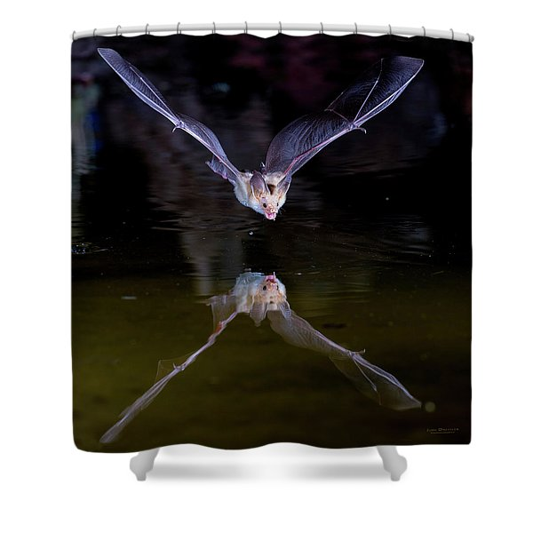 Flying Bat With Reflection Shower Curtain